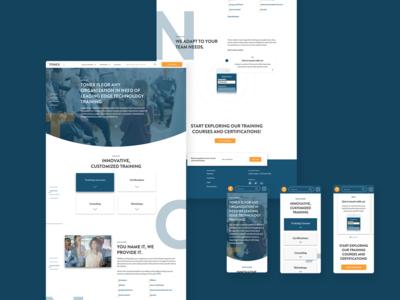 Tonex Technology and Training responsive design landing page interface web design product design ui design