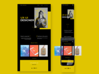 Home Mobile and Web Version