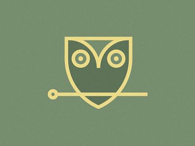 Acupuncture Owl owl shield acupuncture medicine