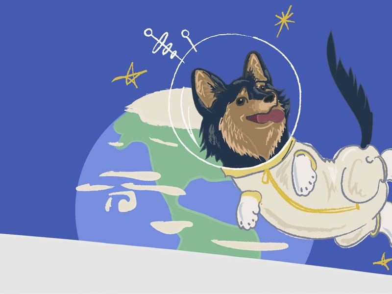 Astronaut Tripp space astronaut illustration corgi