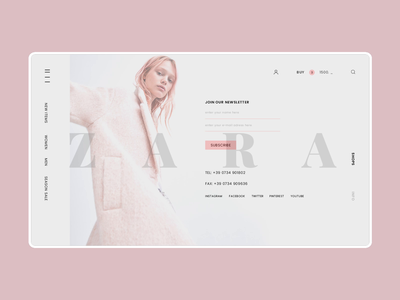 Zara Online Store Info & Search Page Animation