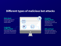 Types of Bot Attacks