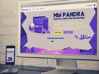 Pandra website