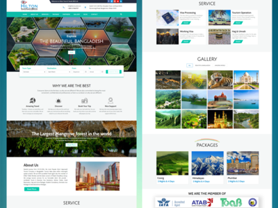 Hilton Tours Travels Home page Design