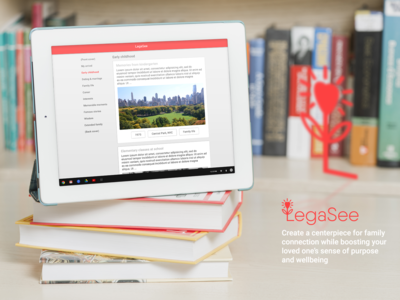 Interface Design for Legasee