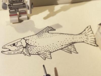 Trout Illustration moleskine pens drawing sketching illustration trout