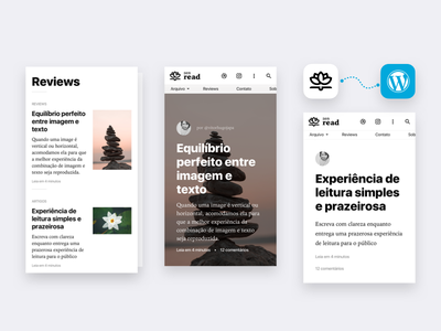 Zen Read WordPress Theme diagramation ux mobile reading typography blog theme wp wordpress