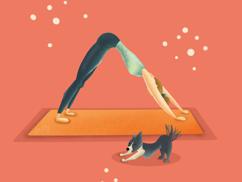 Dog Doing Downward Dog yogi breathe illustration cartoon downward dog dog pilates stretching yoga