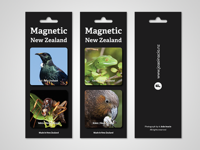 Magnetic New Zealand endemic species sustainability conservation souvenir magnets new zealand photography art direction packaging design graphic design