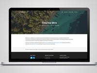 Catarina Silva website