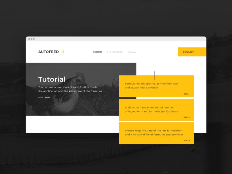 Website - Module web design flat corporate ux ui website web concept design