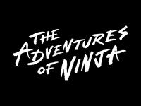 Adventures Of Ninja