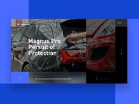 Magnus Pro