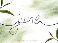 June Bop Font