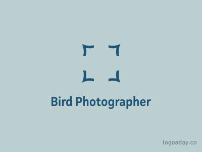 Bird Photographer pic photographer photo photography bird