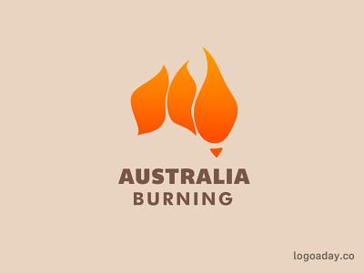Australia Burning koala burning bushfire fire australia