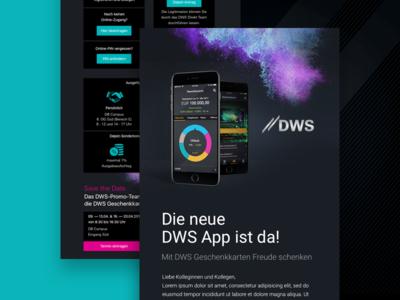 Newsletter Financial DWS