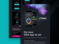 Newsletter Financial DWS