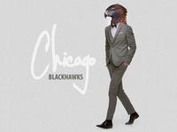 Congratulations Blackhawks