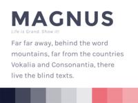 Magnus - mini style tile style tile theme wordpress