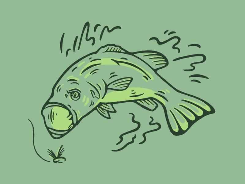 fishey fishey
