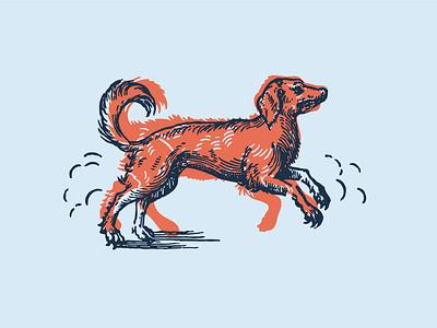 Pupper minimal logo illustrator vector illustration design