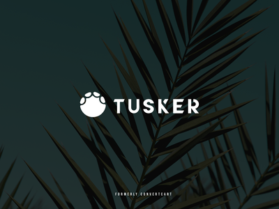 Tusker vector illustration typography india branding design logotype logodesign logo
