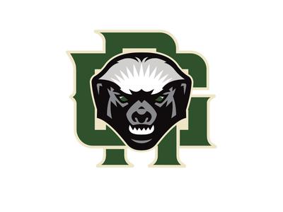 Green rattan secondary logo green rattan ratel honey badger mellivora capensis sportslogo basketball logo basketball