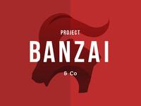 Project Banzai Logo Design