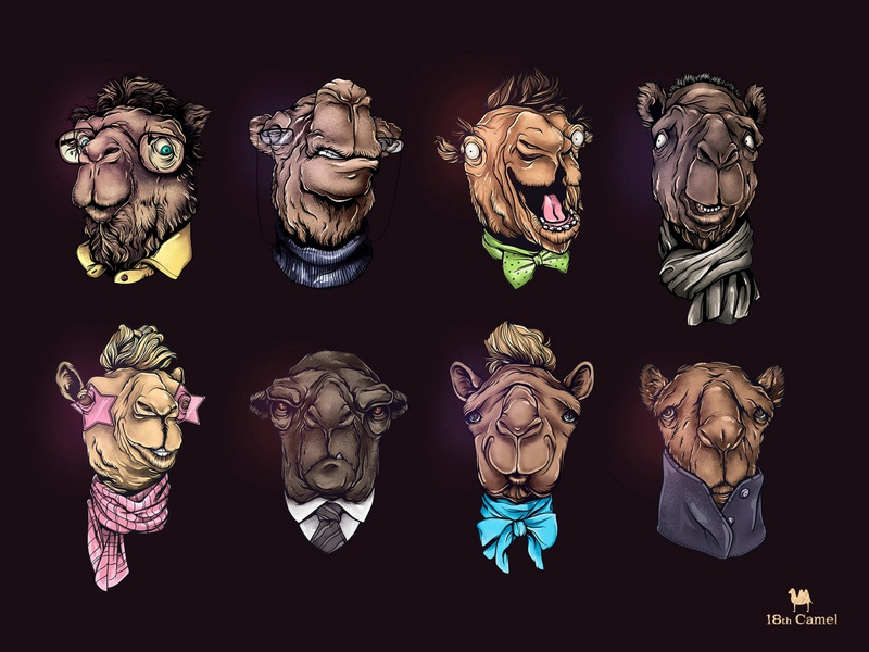 Camel characters character design illustration