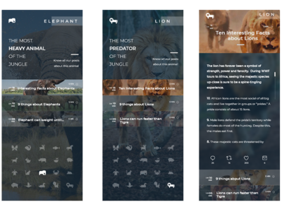 Blog using the Animal Icons Kit of @SteveWolf raylin aquino stevewolf adobexd ui app mobile posts blog