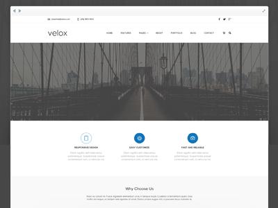 Velox PSD Freebie template design ui free psd web