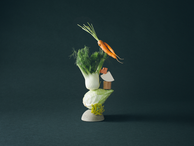 The Kitchen Photoshoot cookie vegetable carrot sandwich fish food danish geometry structure surreal moody dark chiaroscuro shapes photography paper zendesk