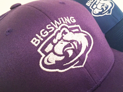 Big Swing disc golf frisbee falcon illustrator mockup cap logo design disc golf