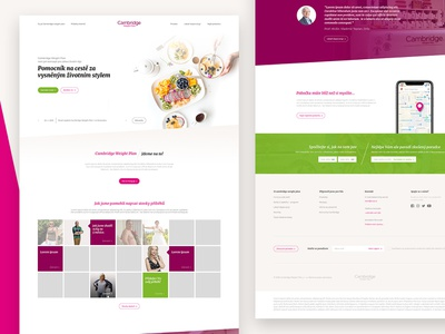 Diet website vegerable food green violet header carousel footer contact bmi ux web ui pack webdesign design web diet