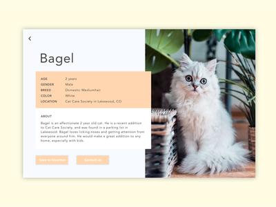 Daily UI 06: User Profile