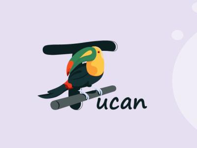 Tucan packaging ui design website flat minimal illustration vector bird character alphabet