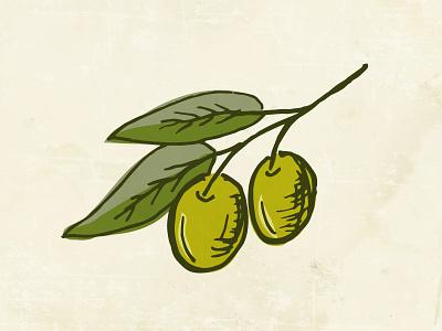 Olive sprig simple doodle leaves leaf drawing branch sprig olive