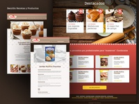 Dánica | Web Design
