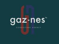 Gaz Nes consulting