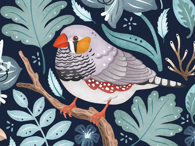 Zebra Finch fresco cute illustrator flowers uk folklore pattern leaves floral europe blue bird illustration finch