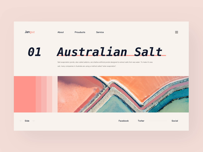 Australian Salt /Website Animation Concept web design color matching natural great mount new zeland australian salt australian colors ue bauhaus animation after effects gif format video principle ui grid system website design