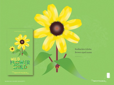 Brown eyed Susan field guides graphic design gamification canadian rockies wild flower child assets augmented reality flower specimens trail time hike with kids branding hike thewayfindercompany identity brand creative direction design illustration