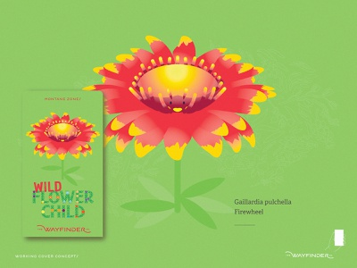 Firewheel tell stories trail guides hiking guides assets augmented reality gamification nature trail time wild flowers wild flowerchild flower specimens hike with kids branding hike thewayfindercompany identity brand creative direction design illustration