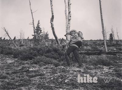 Wco Castle Wildlands hike