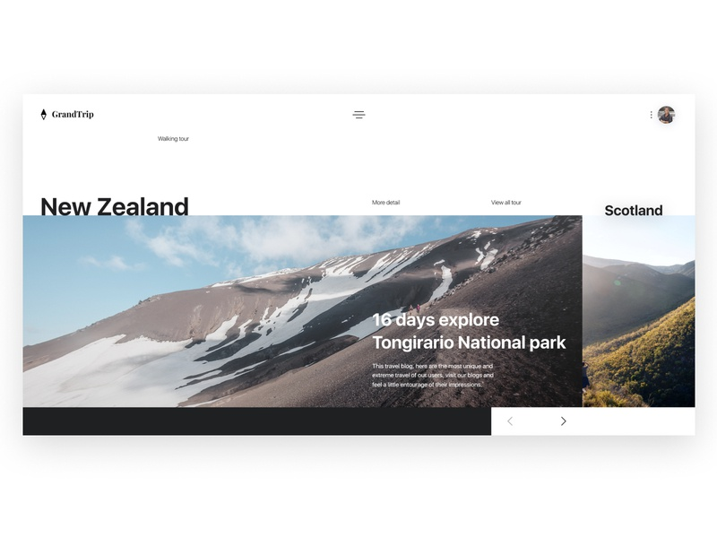 Concept  GrandTrip new zealand user interface design travel tour дизайн ui webdesign webdesigner user interface web user experience design ui  ux photoshop вебдизайн figma design