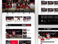 Grand Rapids Griffins Website