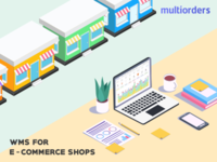 SOLUTION: WMS For E-commerce Shops Multiorders