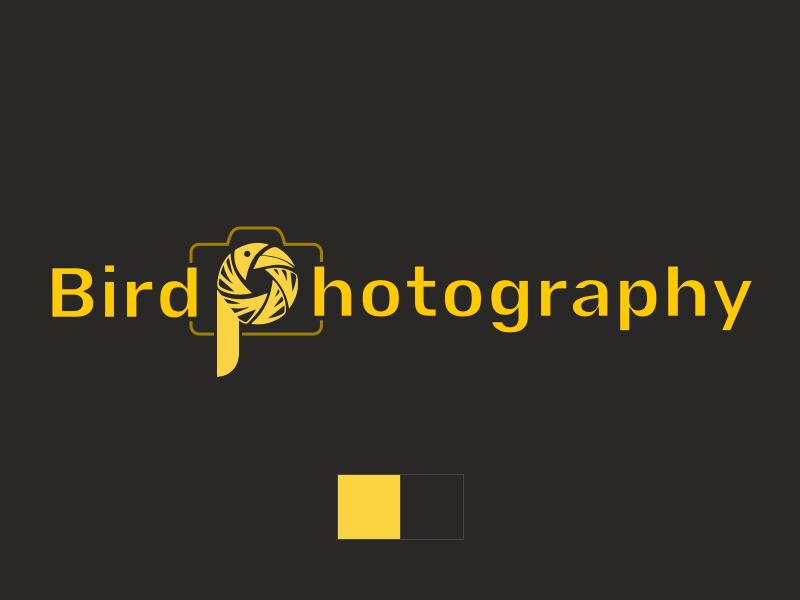 Bird Photography logo concept type minimal flat lettering web illustrator website illustration logo design ui design identity typography vector design branding