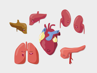 Quick Organ Illustrations